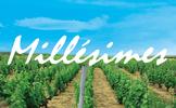 株式会社 ミレジム/Millesimes, Inc.